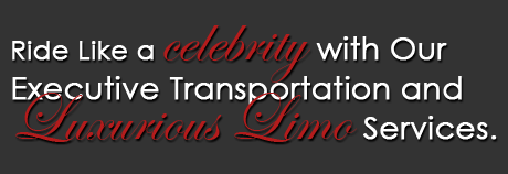 Executive Limousine Service